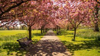 春からの新生活に必要な光インターネットのお薦めプロバイダーを紹介。