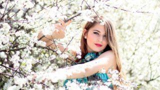 宮城県仙台市で桜の名所と開花時期は?花見なら一目千本桜を見よう!