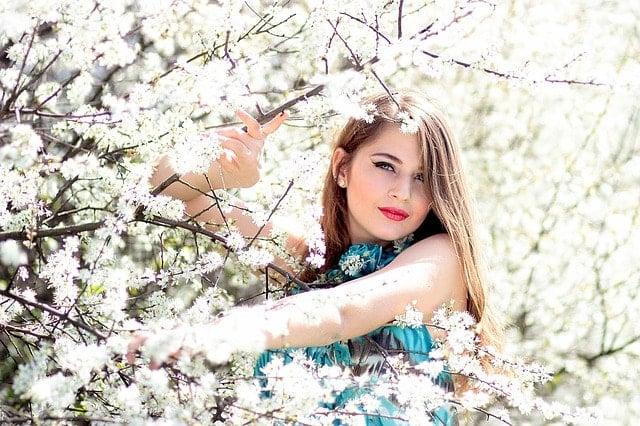 宮城県仙台市で桜の名所と開花時期は?花見で行きたい一目千本桜。